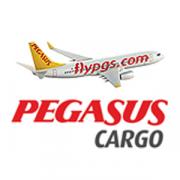 Pegasus Cargo